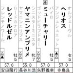 フェブラリーS 出走馬全頭分析(2/2)