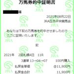 キーンランドカップ 新潟2歳S 2021 展望動画まとめ(動画は明日朝アップします!)