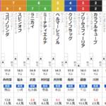 日曜阪神2R 2歳未勝利 予想